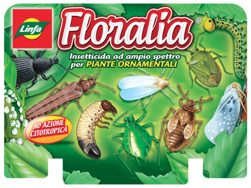 Linea Pack Floralia
